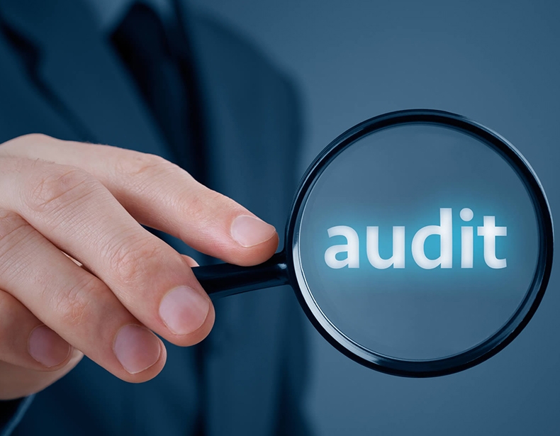 Facing the Audits
